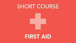 Short Course in First Aid